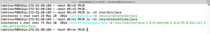 java_alternatives_symlink